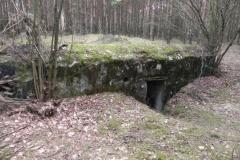 Tom. las - bunkier Piechoty4 (44)
