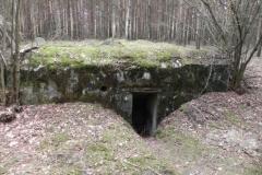 Tom. las - bunkier Piechoty4 (45)