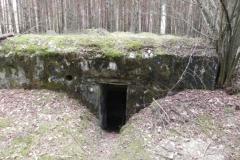 Tom. las - bunkier Piechoty4 (46)