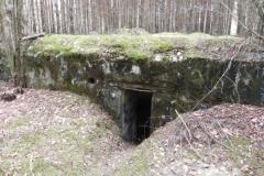 Tom. las - bunkier Piechoty4 (53)