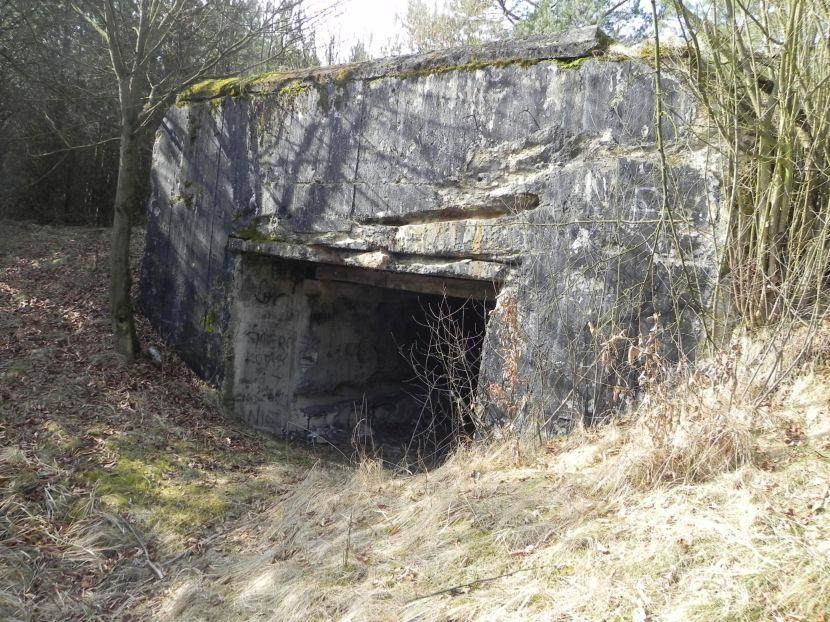 Tom. las - bunkier Garaż3 (18)
