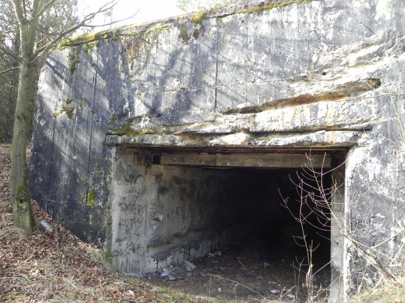 Tom. las - bunkier Garaż3 (20)