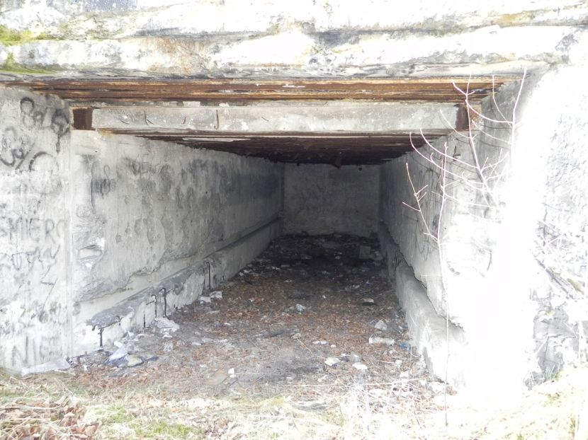 Tom. las - bunkier Garaż3 (21)