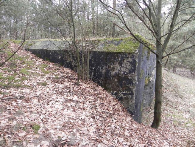 Tom. las - bunkier Garaż3 (35)