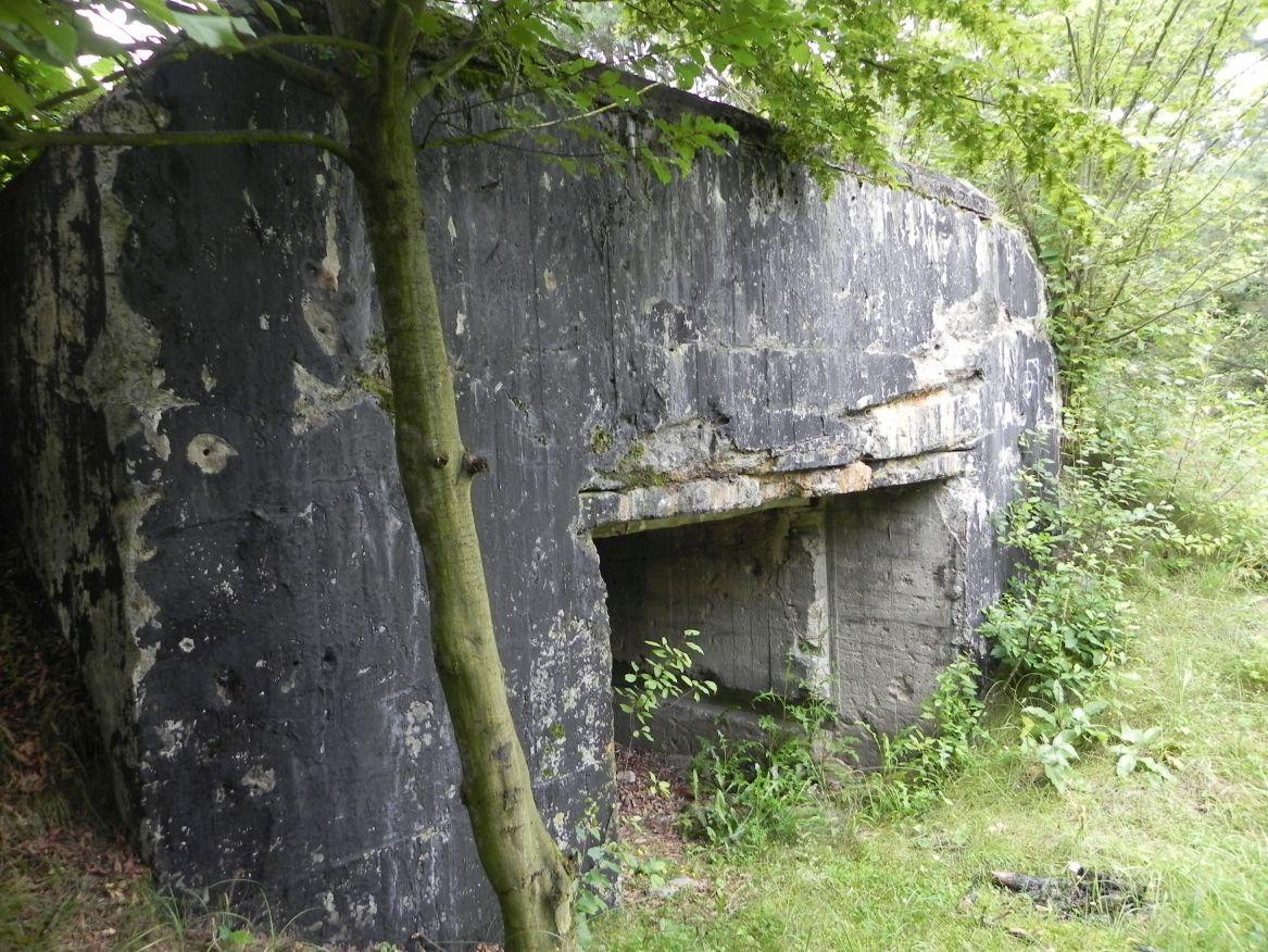 Tom. las - bunkier Garaż3 (6)