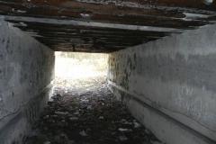 Tom. las - bunkier Garaż3 (29)