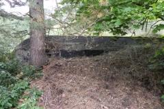 Tom. las - bunkier Garaż3 (5)