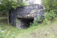Tom. las - bunkier Garaż3 (8)